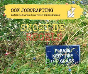 snoei de regels - ook jobcrafting