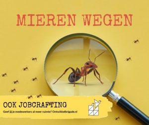 mieren wegen - ook jobcrafting ontwikkelbrigade