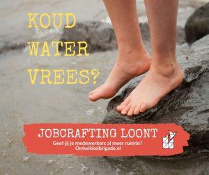 koudwatervrees - jobcrafting loont