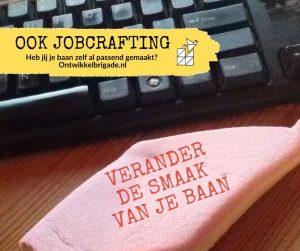 verander de smaak van je baan jobcrafting ontwikkelbrigade