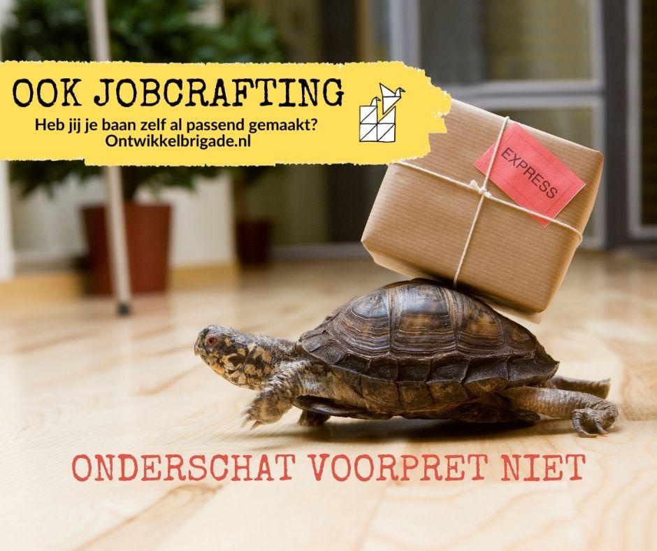 Onderschat voorpret niet - ook jobcrafting