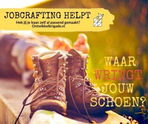 Waar wringt jouw schoen? Ontwikkelbrigade